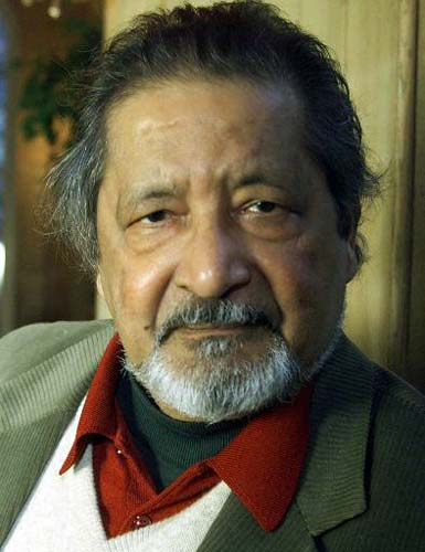 v s naipaul Naipaul was born in trinidad, and his relationship to his birthplace was nothing if not complicated he was often criticized for the way he depicted developing countries in his novels.